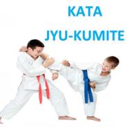 KATA Y JYU-KUMITE 12 FEBRERO