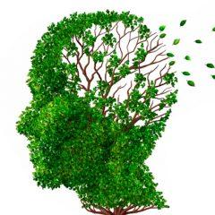 Charla de Formación sobre el Alzheimer