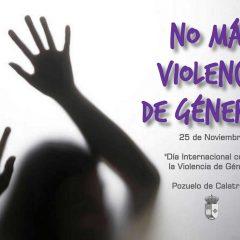 """""""No a la Violencia de Género!"""""""